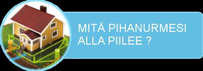 pihanurmi-banneri